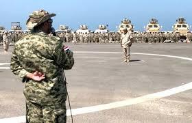 قوات طارق صالح
