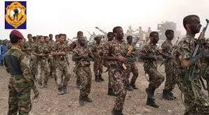 قوات الأمن الخاصة بشبوة