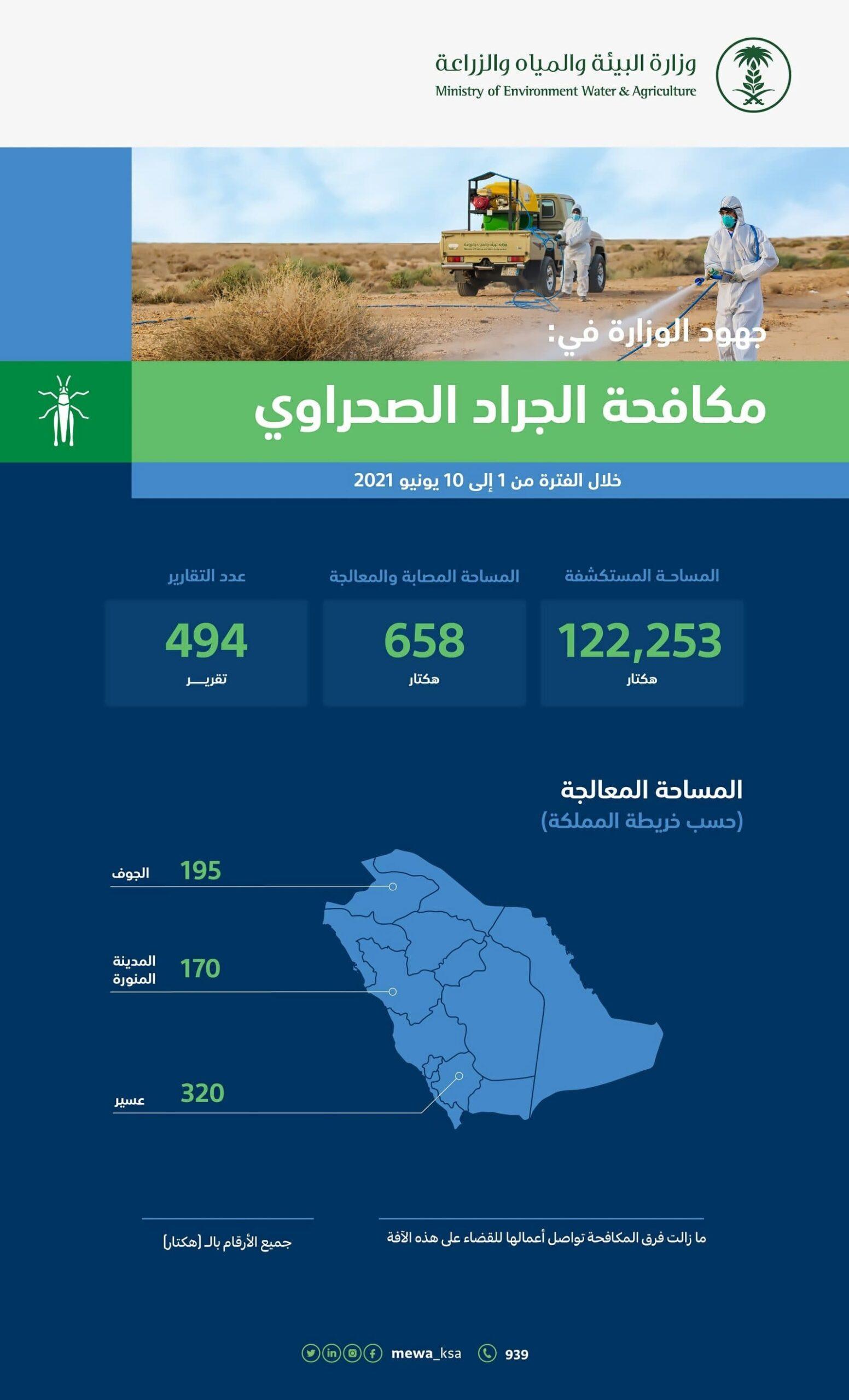 وزارة البيئة السعودية تنفذ حملة واسعة لمكافحة الجراد الصحراوي
